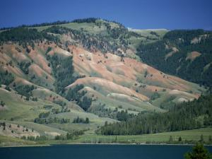 Red Shale Exposed on Hillside, Gros Ventre Valley, Wyoming, United States of America, North America by Waltham Tony