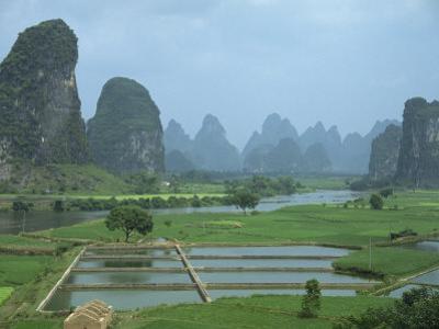 Rice Paddies, Fish Farms and Limestone Pinnacles, Fenglin Karst, Guilin, Yangshuo, Guangxi, China