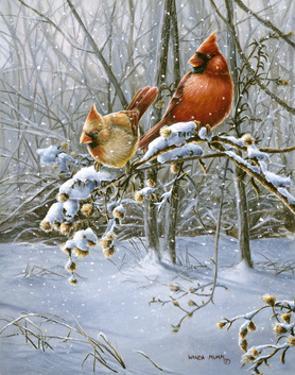 Snow Fire by Wanda Mumm