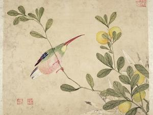One of a Series of Paintings of Birds and Fruit, Late 19th Century by Wang Guochen