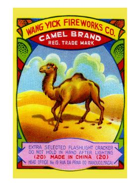 Wang Yick Fireworks Camel Brand