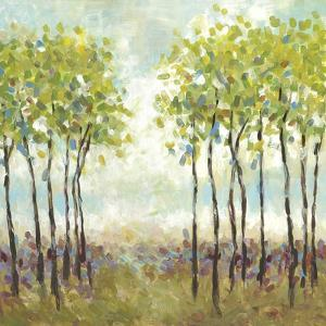 Foxwood I by Wani Pasion