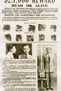 Wanted Poster with Mugshots Louis 'Lepke' Buchalter, Jewish American Gangster