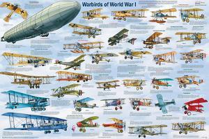 Warbirds of World War I