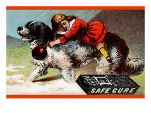 Warner's Safe Cure