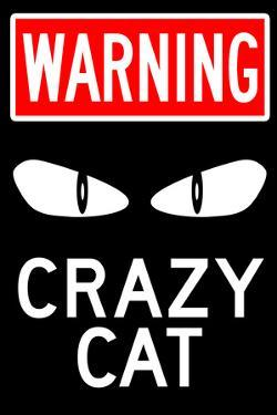 Warning Crazy Cat Sign Poster