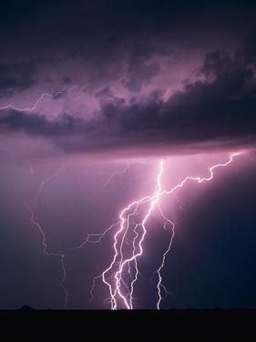 Lightning Bolts by Warren Faidley