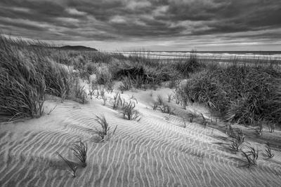 https://imgc.allpostersimages.com/img/posters/washington-long-beach-dusk-on-the-beach-dunes_u-L-Q12T7I70.jpg?p=0