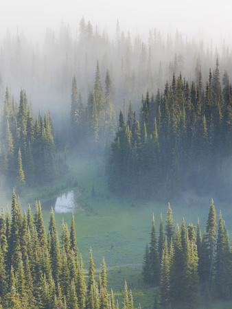 https://imgc.allpostersimages.com/img/posters/washington-mount-rainier-national-park-overview-of-surprise-lake_u-L-PU3F150.jpg?artPerspective=n