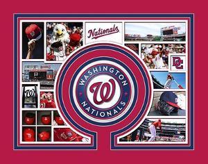 Washington Nationals Milestone & Memories
