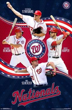 Washington Nationals - Team 15