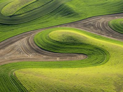 https://imgc.allpostersimages.com/img/posters/washington-whitman-county-aerial-photography-in-the-palouse-region-of-eastern-washington_u-L-Q12T96Z0.jpg?artPerspective=n