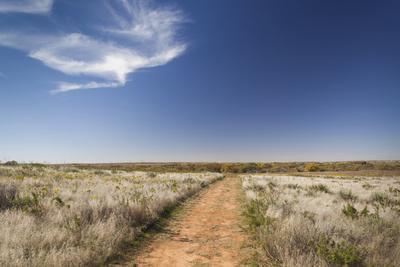https://imgc.allpostersimages.com/img/posters/washita-battlefield-black-kettle-national-grasslands-oklahoma-usa_u-L-PN6RZ50.jpg?artPerspective=n