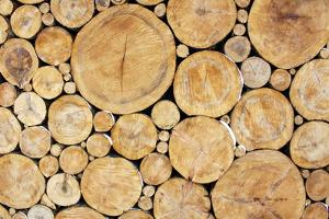 Stacked Logs Background by wasja