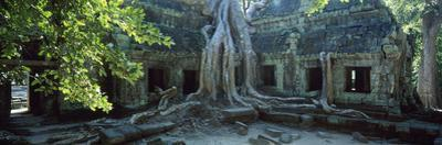 Wat Temple Complex of Ta-Prohm Cambodia