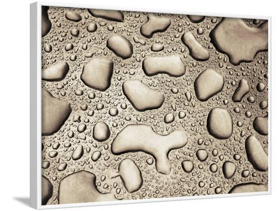 Water Drops--Framed Photographic Print