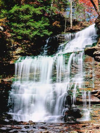 Water falling from rocks in a forest, Genoa Falls, Kitchen Creek, Ricketts Glen State Park, Penn...