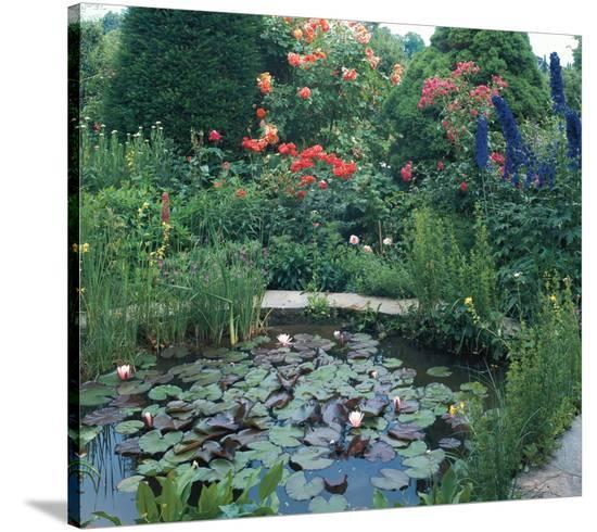 Water Garden II--Stretched Canvas