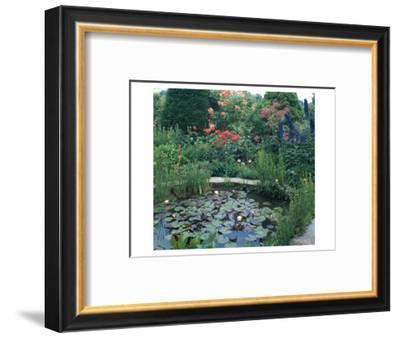 Water Garden II--Framed Art Print
