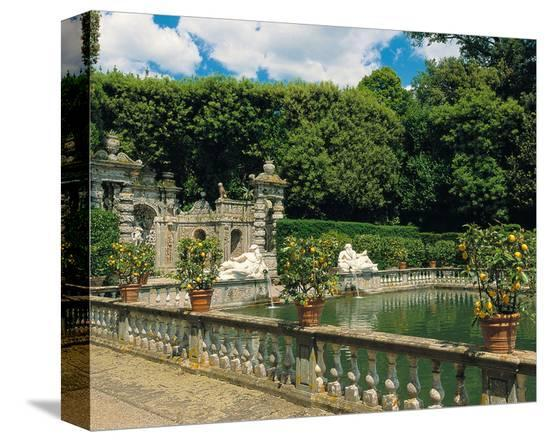 Water garden--Stretched Canvas Print