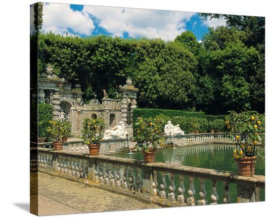 Water garden--Stretched Canvas