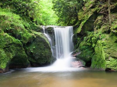 Water in a Forest, Geroldsau Waterfall, Black Forest, Baden-Wurttemberg, Germany