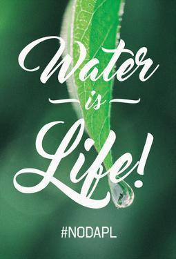 Water Is Life - Leaf Water Drop
