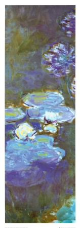https://imgc.allpostersimages.com/img/posters/water-lilies-and-agapanthus-detail_u-L-E8N500.jpg?p=0