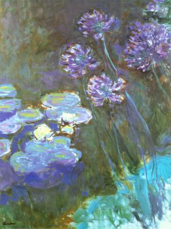 https://imgc.allpostersimages.com/img/posters/water-lilies-and-agapanthus_u-L-E8N910.jpg?artPerspective=n