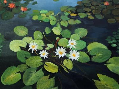 https://imgc.allpostersimages.com/img/posters/water-lilies_u-L-PN3Q430.jpg?p=0