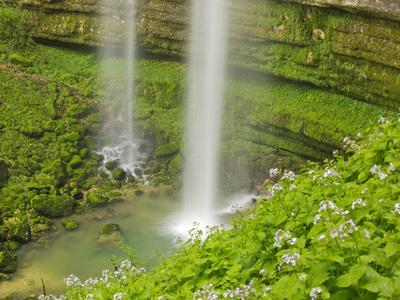 https://imgc.allpostersimages.com/img/posters/waterfall-cirque-de-la-consolation-doubs-france_u-L-Q11YX5X0.jpg?artPerspective=n