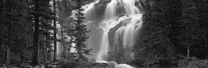 Waterfall in a Forest, Banff, Alberta, Canada