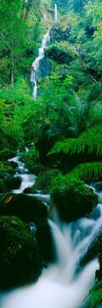 Waterfall in a Forest, Dartmoor, Devon, England