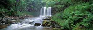 Waterfall in a Forest, Sgwd Yr Eira (Waterfall of Snow), Afon Hepste, Brecon Beacons National Pa...
