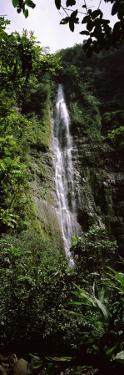 Waterfall in a Forest, Waimoku Falls, Haleakala National Park, Maui, Hawaii, USA