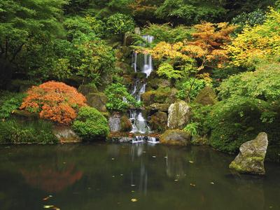 https://imgc.allpostersimages.com/img/posters/waterfall-in-autumn-at-the-portland-japanese-garden-portland-oregon-usa_u-L-PHAURQ0.jpg?p=0