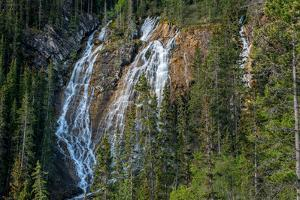 Waterfall in forest, Grassi Falls, Canmore, Alberta, Canada