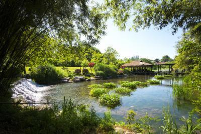 https://imgc.allpostersimages.com/img/posters/waterfall-pond-bamboo-grove-and-straw-roof-hut-at-west-lake-hangzhou-zhejiang-china_u-L-PWFEAV0.jpg?p=0