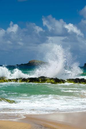 https://imgc.allpostersimages.com/img/posters/waves-breaking-on-the-rocks-at-kauapea-beach-kauai-hawaii-usa_u-L-PN6WT60.jpg?p=0