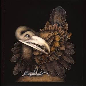 BOMBAX BIRD by Wayne Anderson
