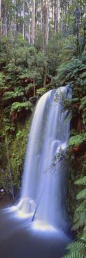 Beauchamp Falls Vert II by Wayne Bradbury