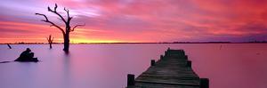 Lake Charm Red by Wayne Bradbury