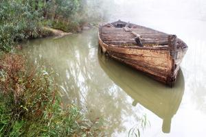 Old Barge 2 by Wayne Bradbury