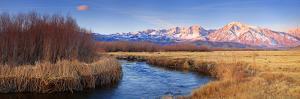 Owens River by Wayne Bradbury