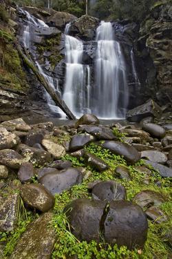 Stevenson Falls by Wayne Bradbury