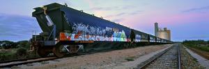 Tagged Train by Wayne Bradbury