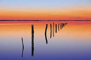 Vanishing Fence Line by Wayne Bradbury