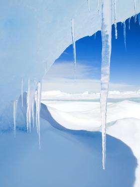 Antarctic Icicles, Snow Hill Island, Weddell Sea, Antarctica by Wayne Lynch