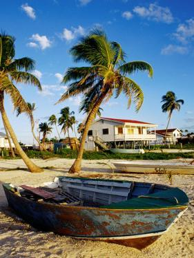 Skiff on Coral Beach Sand, Belize by Wayne Walton