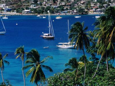 Yachts in Harbour, Port Elizabeth, St. Vincent & the Grenadines by Wayne Walton